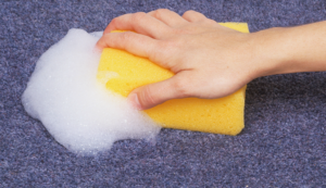 How to clean a carpet by hand – Get Cool life hacks