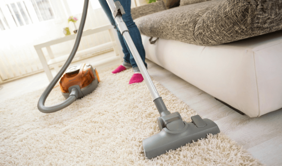 How to clean disgusting Carpet